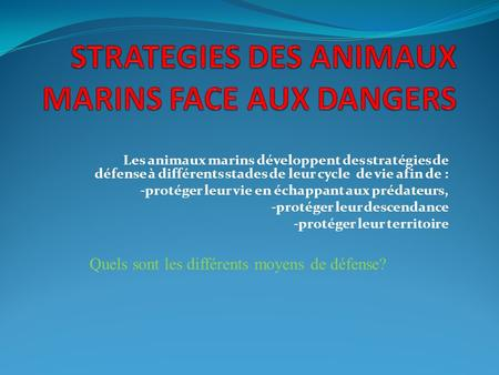 STRATEGIES DES ANIMAUX MARINS FACE AUX DANGERS