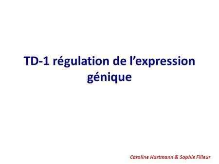 TD-1 régulation de l'expression génique