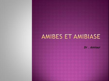 Amibes et Amibiase Dr . Amiour.