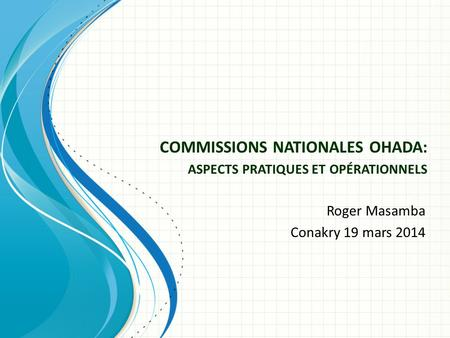 COMMISSIONS NATIONALES OHADA: ASPECTS PRATIQUES ET OPÉRATIONNELS Roger Masamba Conakry 19 mars 2014.
