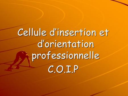 Cellule d'insertion et d'orientation professionnelle C.O.I.P.