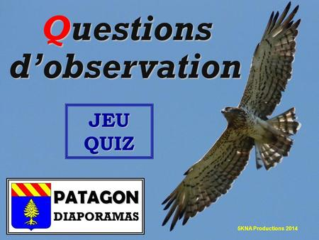 Questions d'observation JEU QUIZ 5KNA Productions 2014.