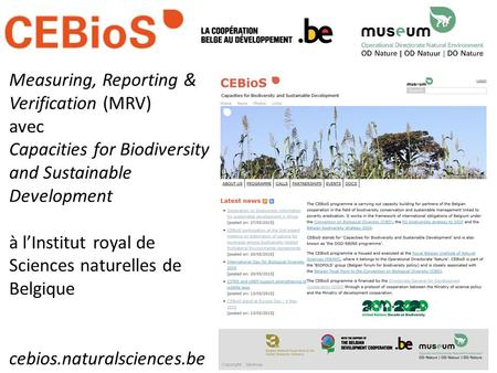 Measuring, Reporting & Verification (MRV) avec Capacities for Biodiversity and Sustainable Development à l'Institut royal de Sciences naturelles de Belgique.