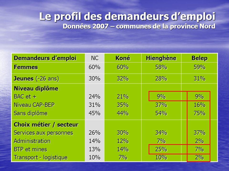 Le profil des demandeurs d'emploi Données 2007 – communes de la province Îles Loyauté Demandeurs d'emploi NCLifouMaréOuvéa Femmes60%56%56%54% Jeunes (-26 ans) 30%24%15%11% Niveau diplôme BAC et + Niveau CAP-BEP Sans diplôme 24%31%45%24%26%50%13%17%71%8%6%86% Choix métier / secteur Services aux personnes Administration BTP et mines Transport - logistique 26%14%13%10%22%14%12%8%29%10%11%6%29%7%9%6%