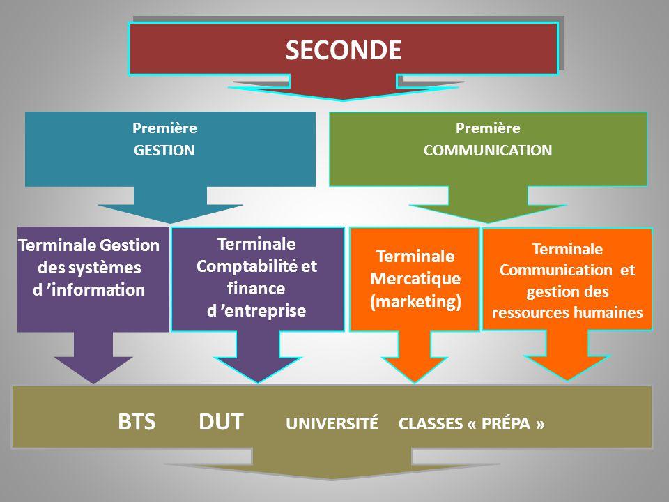 On étudie : L'analyse de données chiffrées Les mécanismes financiers de l'entreprise Les technologies de l'information et de la communication Le rôle de l'information dans le fonctionnement de l'entreprise On étudie : L'analyse de données chiffrées Les mécanismes financiers de l'entreprise Les technologies de l'information et de la communication Le rôle de l'information dans le fonctionnement de l'entreprise On étudie : L'analyse des relations humaines Comportement de l'individu au sein des organisations Les technologies de l'information et de la communication Le rôle de l'information dans le fonctionnement de l'entreprise On étudie : L'analyse des relations humaines Comportement de l'individu au sein des organisations Les technologies de l'information et de la communication Le rôle de l'information dans le fonctionnement de l'entreprise Le Bac STG COMMUNICATION Le Bac STG COMMUNICATION Le Bac STG GESTION Le Bac STG GESTION