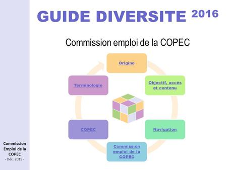 GUIDE DIVERSITE 2016 Commission emploi de la COPEC
