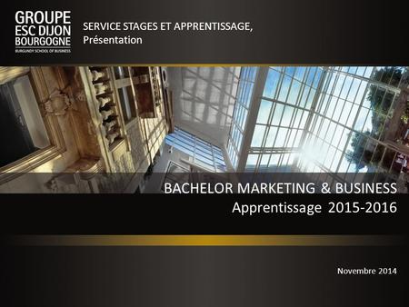 BACHELOR MARKETING & BUSINESS Apprentissage 2015-2016 SERVICE STAGES ET APPRENTISSAGE, Présentation Novembre 2014.