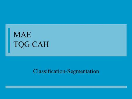 MAE TQG CAH Classification-Segmentation. Plan n AD vers FD n Classification : principes n CAH : la méthode n CAH : les propriétés n CAH : exemple IAE.