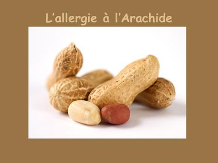 L'allergie à l'Arachide. Introduction L'allergie à l'arachide a doublé au cours des 10 dernières années. Deuxième allergie alimentaire chez l'enfant après.