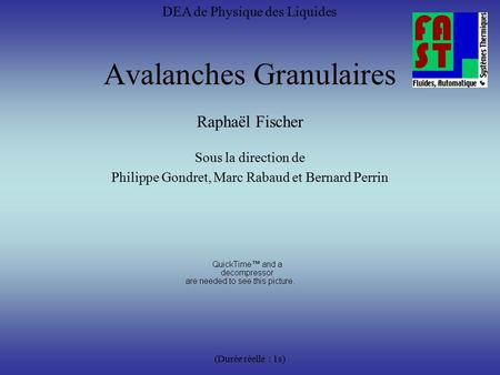 Avalanches Granulaires