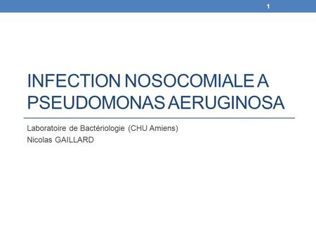 Infection nosocomiale a Pseudomonas aeruginosa