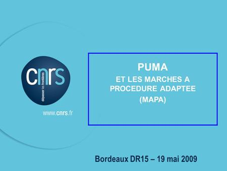 P. 01 1 Bordeaux DR15 – 19 mai 2009 PUMA ET LES MARCHES A PROCEDURE ADAPTEE (MAPA)