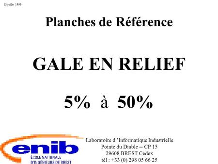 Planches de Référence GALE EN RELIEF 5% à 50% Laboratoire d Informatique Industrielle Pointe du Diable -- CP 15 29608 BREST Cedex tél : +33 (0) 298 05.