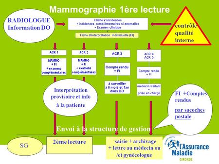 Mammographie 1ère lecture