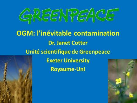 OGM: l'inévitable contamination Unité scientifique de Greenpeace