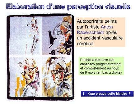 Elaboration d'une perception visuelle