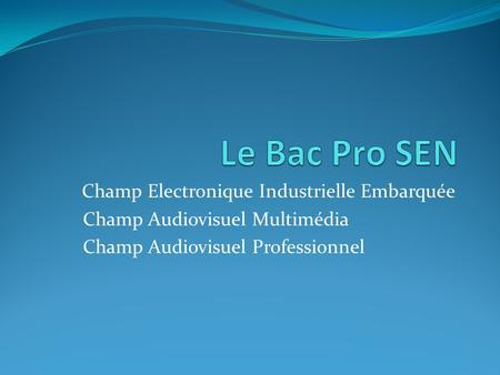 Champ Electronique Industrielle Embarquée Champ Audiovisuel Multimédia Champ Audiovisuel Professionnel.
