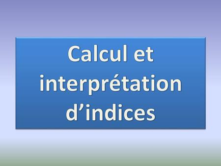 Calcul et interprétation d'indices