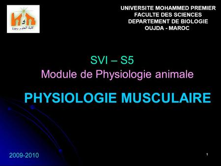 1 PHYSIOLOGIE MUSCULAIRE SVI – S5 2009-2010 Module de Physiologie animale UNIVERSITE MOHAMMED PREMIER FACULTE DES SCIENCES DEPARTEMENT DE BIOLOGIE OUJDA.