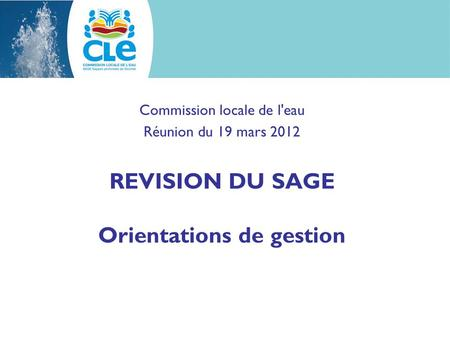 Commission locale de l'eau Réunion du 19 mars 2012 REVISION DU SAGE Orientations de gestion.