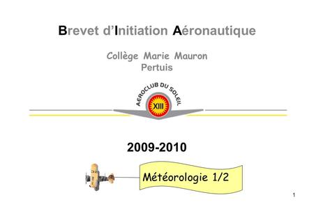 Brevet d'Initiation Aéronautique