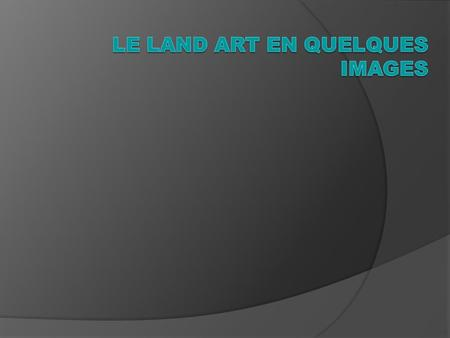 Le LAND ART en quelques images