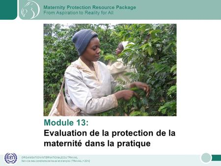ORGANISATION INTERNATIONALE DU TRAVAIL Service des conditions de travail et demploi (TRAVAIL) 2012 Module 13: Evaluation de la protection de la maternité