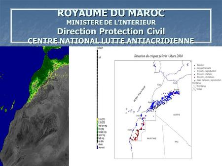 ROYAUME DU MAROC MINISTERE DE L'INTERIEUR Direction Protection Civil CENTRE NATIONAL LUTTE ANTIACRIDIENNE.