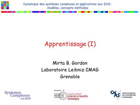 Mirta B. Gordon Laboratoire Leibniz-IMAG Grenoble