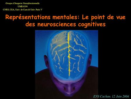 Groupe dImagerie Neurofonctionnelle. UMR 6194 CNRS, CEA, Univ. de Caen & Univ. Paris V Représentations mentales: Le point de vue des neurosciences cognitives.