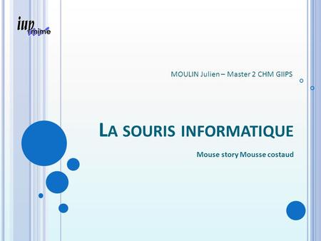 L A SOURIS INFORMATIQUE Mouse story Mousse costaud MOULIN Julien – Master 2 CHM GIIPS.
