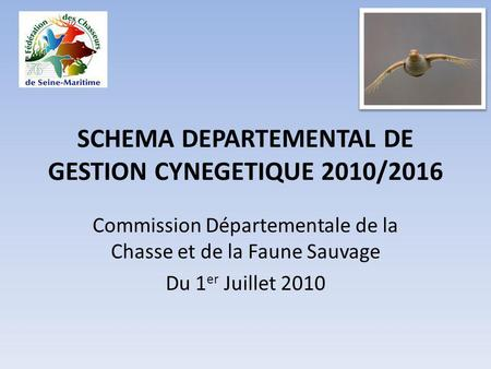 SCHEMA DEPARTEMENTAL DE GESTION CYNEGETIQUE 2010/2016