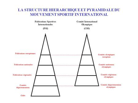 LA STRUCTURE HIERARCHIQUE ET PYRAMIDALE DU MOUVEMENT SPORTIF INTERNATIONAL Fédérations Sportives Internationales (FSI) Comité International Olympique (CIO)