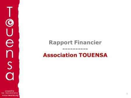 Rapport Financier Association TOUENSA