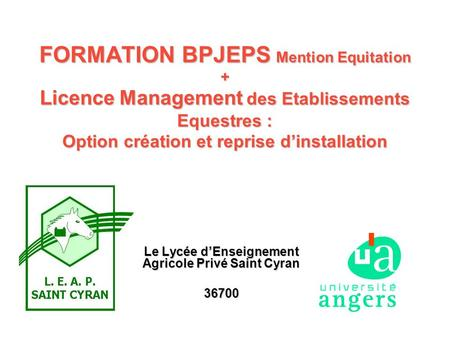 FORMATION BPJEPS Mention Equitation + Licence Management des Etablissements Equestres : Option création et reprise dinstallation Le Lycée dEnseignement.