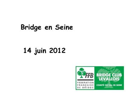 Bridge en Seine 14 juin 2012.