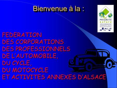 FEDERATION DES CORPORATIONS DES PROFESSIONNELS DE LAUTOMOBILE, DU CYCLE, DU MOTOCYCLE ET ACTIVITES ANNEXES DALSACE FEDERATION DES CORPORATIONS DES PROFESSIONNELS.