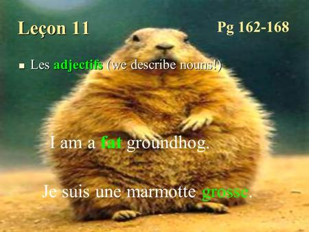 Leçon 11 Les adjectifs (we describe nouns!) Les adjectifs (we describe nouns!) I am a fat groundhog. Je suis une marmotte grosse. Pg 162-168.