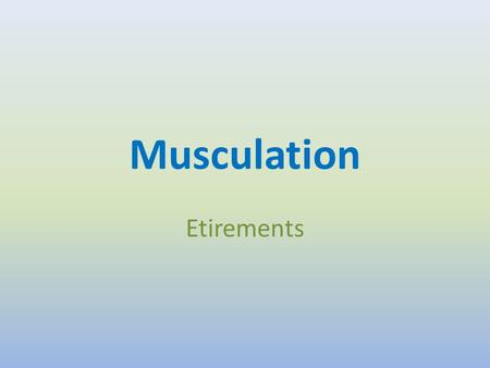 Musculation Etirements.