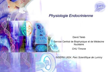 Physiologie Endocrinienne