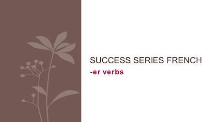 Success Series French -er verbs.