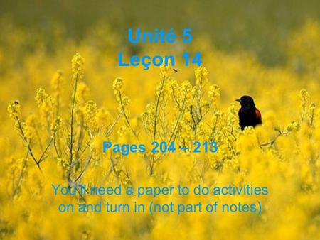 Unité 5 Leçon 14 Pages 204 – 213 Youll need a paper to do activities on and turn in (not part of notes)