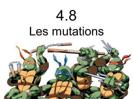 4.8 Les mutations. _ _ Mutations Sont des modifications de lADN qui sont transmises lors de la réplication 7 TYPES Substitution Insertion Inversion Copies.