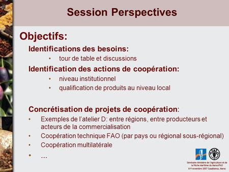 Session Perspectives Objectifs: Identifications des besoins: tour de table et discussions Identification des actions de coopération: niveau institutionnel.