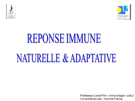 NATURELLE & ADAPTATIVE