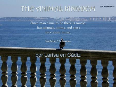 por Larísa en Cádiz Since man came to be there is music; but animals, atoms, and stars also create music. Karlheinz Stockhausen but animals, atoms, and.