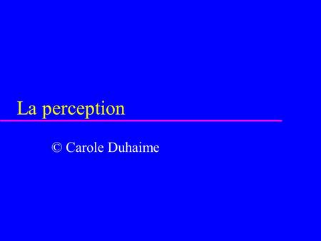 La perception © Carole Duhaime.