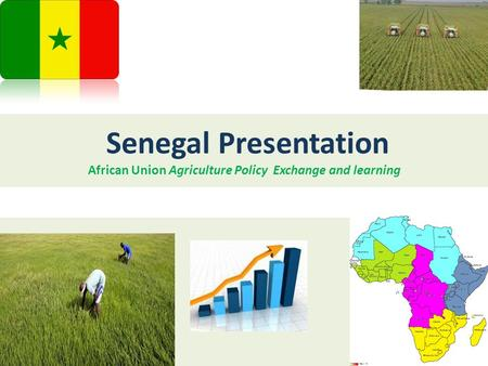 Senegal Presentation African Union Agriculture Policy Exchange and learning.