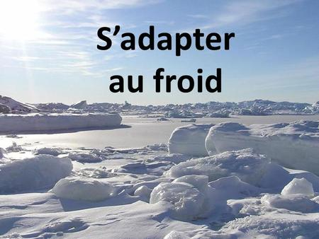 S'adapter au froid.