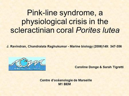 Pink-line syndrome, a physiological crisis in the scleractinian coral Porites lutea J. Ravindran, Chandralata Raghukumar - Marine biology (2006)149: 347-356.